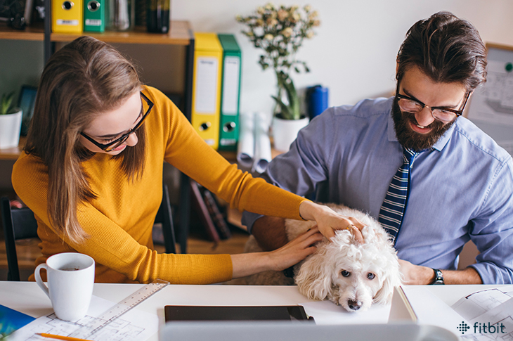 Benefits Of Bringing Pets To Work